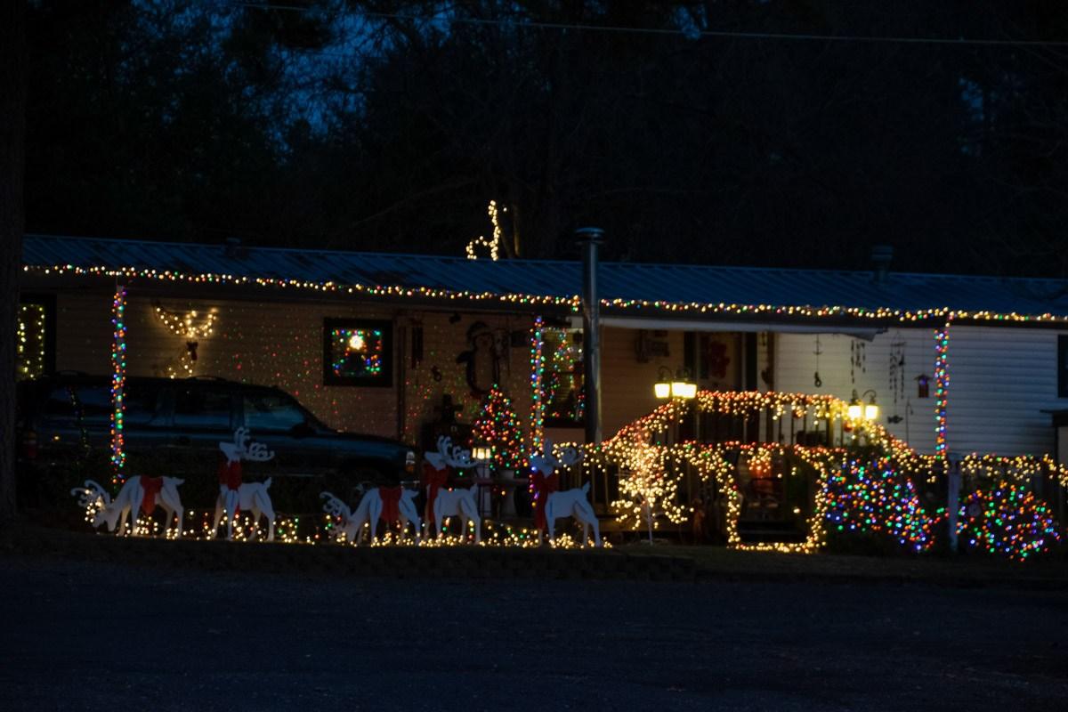 SV-Gallery-Christmas-18