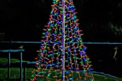 SV-Gallery-Christmas-1