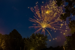 SV-Gallery-Fireworks-1